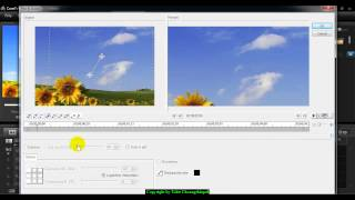 Pan & Zoom Video