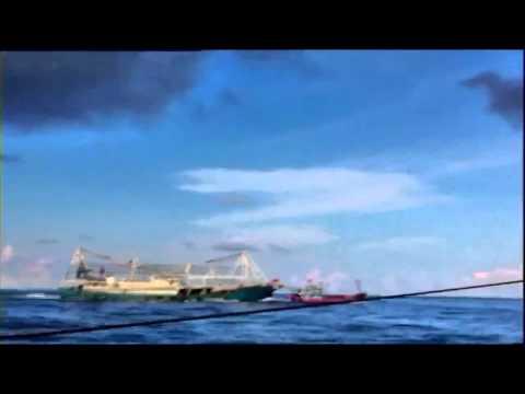 Tàu Trung quốc đâm chìm tàu Việt Nam