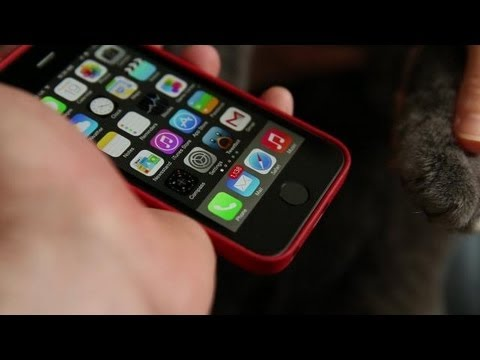 iPhone 5s Cat's Paw Test