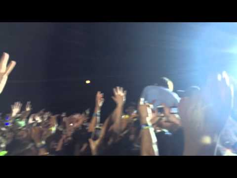 Thomas Mars of Phoenix in the crowd - Bonnaroo 2014
