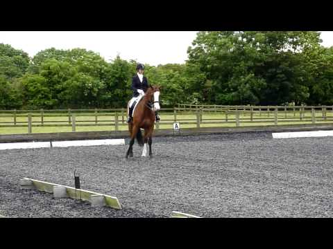 Charlotte Jackson and Splodge winning at Hunters M75 23.6.13