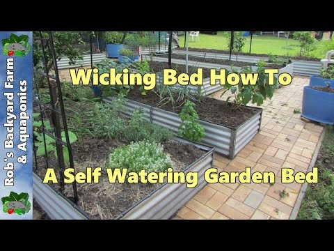 Wicking Bed How To A Self Watering Garden Bed Youtube