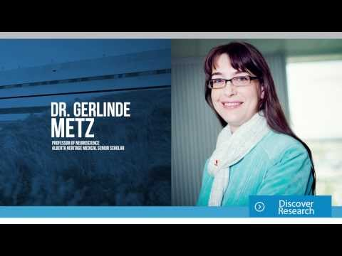 Research:  Gerlinde Metz
