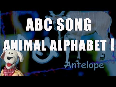 Children's Video | Animal Alphabet, The ABCs