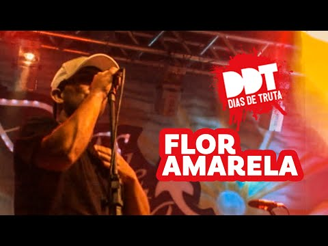 12 - Flor amarela - DIAS DE TRUTA - DVD ao vivo (VIDEO OFICIAL).mpg