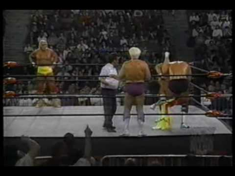 1-8-96 Ric Flair and Arn Anderson vs Hulk Hogan and Randy Savage 2 of 2