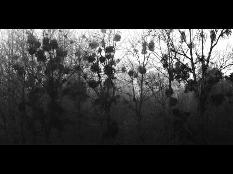 Thumbnail of video Recondite - Floe