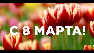 Артисты мюзиклов «Граф Орлов» и «Монте-Кристо» поздравляют с 8 марта!