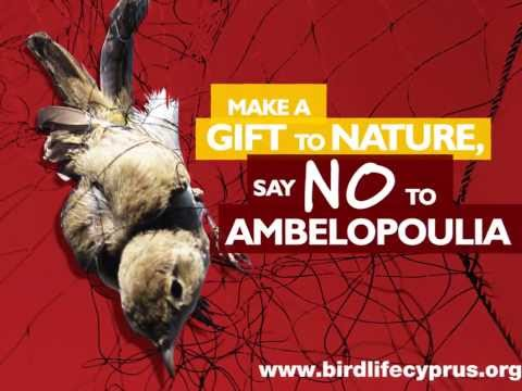 Cyprus bird trapping - BirdLife Cyprus' radio spot on the non selective nature of trapping