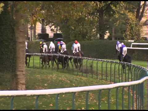 Vidéo de la course PMU PRIX COUNT SCHOMBERG
