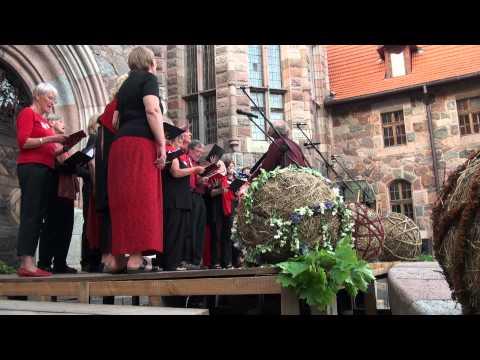 Festivāla BALTIKA 2012 koncerts Cesvaines pils pagalmā 8.o7.2012 - 00653.MTS