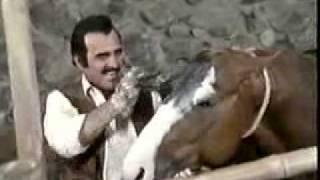 Si te vas no hay lio Vicente Fernandez