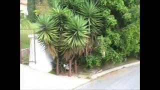 Charles Manson Family Murder Scene Leno LaBianca House