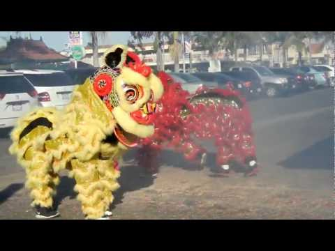 Lion Dance At Van Son Entertainment 2013