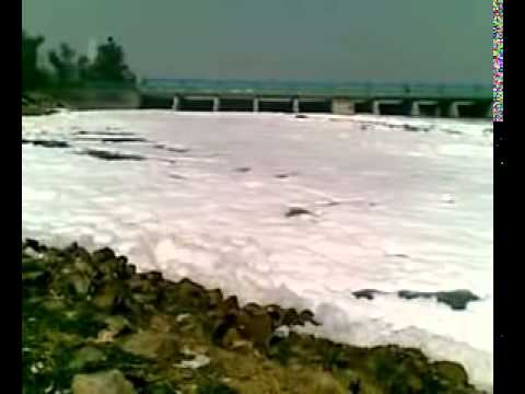 Polluting River Yamuna