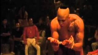 Van Damme Kickboxer (2)