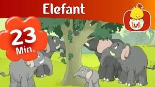 Elefant Episod Lung, Pentru Copii