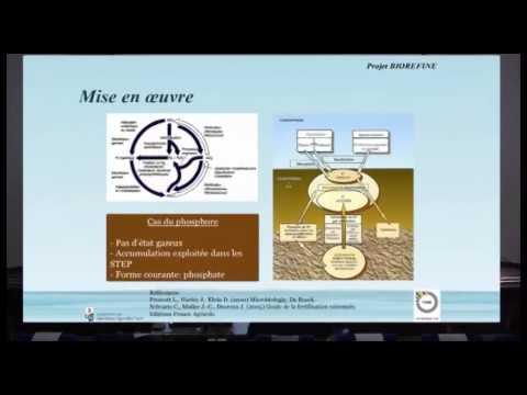 Cédric Tarayre - Projets INTERREG RENEW et BIOFENE