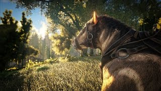 ARK: Survival Evolved - Patch 248