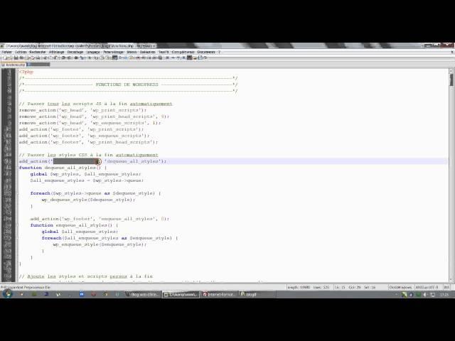 Tutoriel vidéo Youtube - PageSpeed WordPress (SEO) : éliminer les codes Javascript et les styles CSS qui bloquent l'affichage