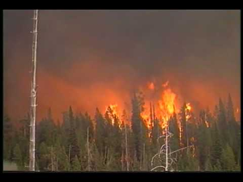 Yellowstone Aflame Music Video - National Park DVD