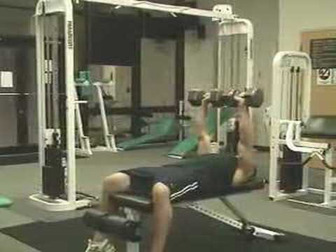 Chest Workouts - Weight Training Exercises To Build Big Pecs Image 1