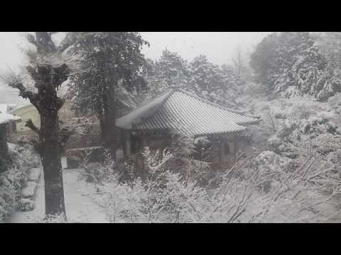 Tokyo snow day two