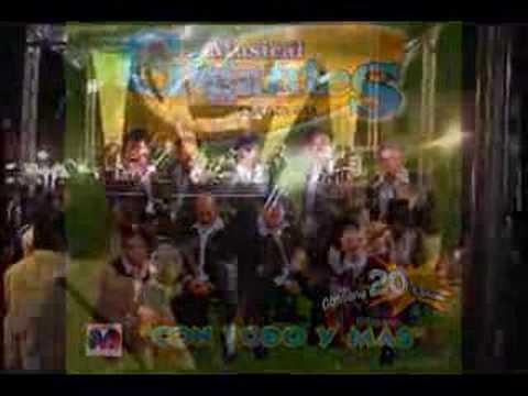 MUSICAL GIGANTES COMO DE TREINTA DISCOSMAX  MUSICA DE OAXACA