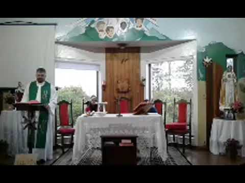 Santa Missa | 17.09.2020 | Quinta-feira | Padre Paulo Sérgio Mendes da Silva | ANSPAZ