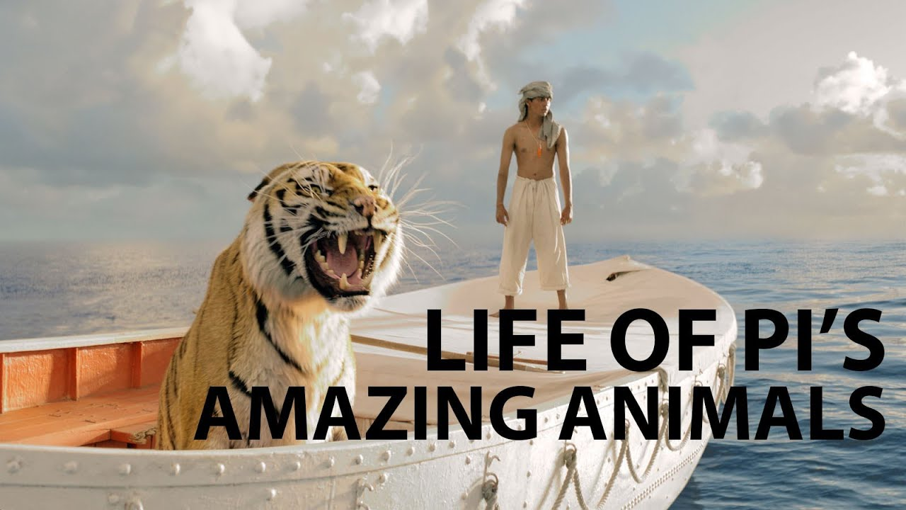 life of pi animals Main characters in life of pi book, analysis of key characters  in the second ( animal-less) story told by pi, the cook needlessly amputates the sailor's broken.