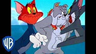 Tom a Jerry - Tomove výkriky