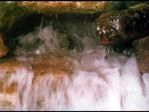نفي سعودي لمزاعم تلوث ماء زمزم بالزرنيخ