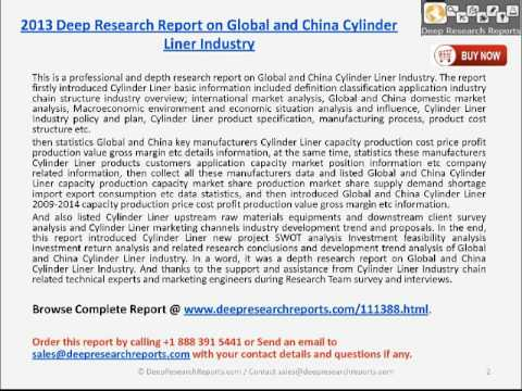 2013 Global and China Cylinder Liner Market