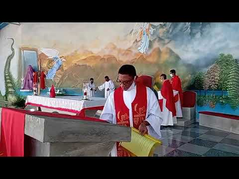 Santa Missa de Ramos e da paixão do Senhor | 28.03.2021 | ANSPAZ