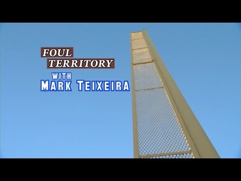 Mark Teixeira wants to be Masahiro Tanaka's tour guide - Foul Territory