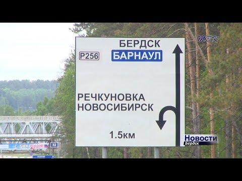 СК отрабатывает версии убийства жительницы Искитима в лесополосе Бердска