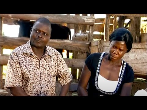 Shamba Shape Up (English) - Maize, Cows, OFSP Thumbnail
