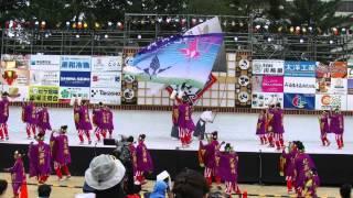 おどるんや~第10回 紀州よさこい祭り~2日目【和歌山城砂の丸競演場】紀楽蝶