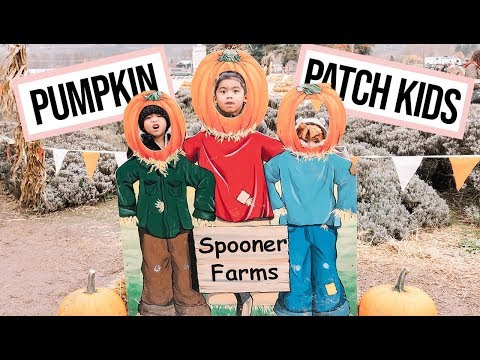 Pumpkin Patch and Kids Say the Darndest Things