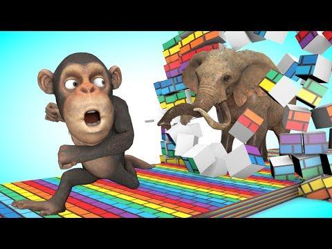 Funny monkey -  تعليم الأطفال تعلم الألوان باللغة الإنجليزية مع متعة قرد مضحك يجد الحيوانات مفاجأة