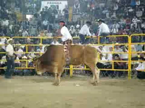 1er Torneo Nacional de Toros de Reparo, Puebla 2008 video 3
