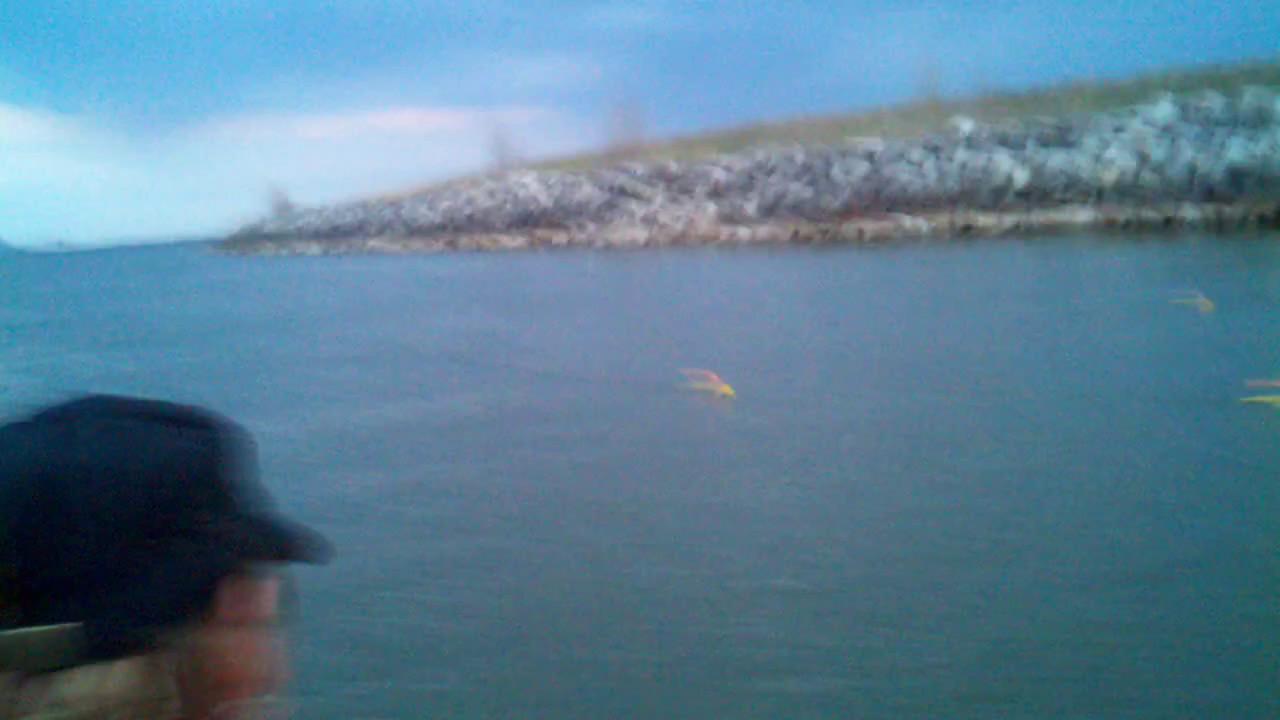 Saginaw bay walleye fishing youtube for Saginaw bay fishing