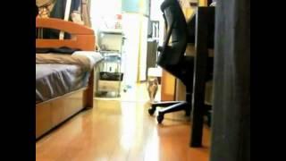 Dramatic Stalking Cat (HD)