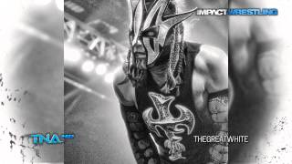 2014: Willow (Jeff Hardy) 14th & New TNA Theme Song