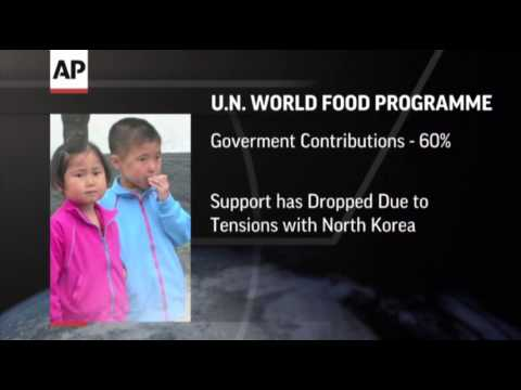 UN Report: Food Aid to North Korea Dwindles