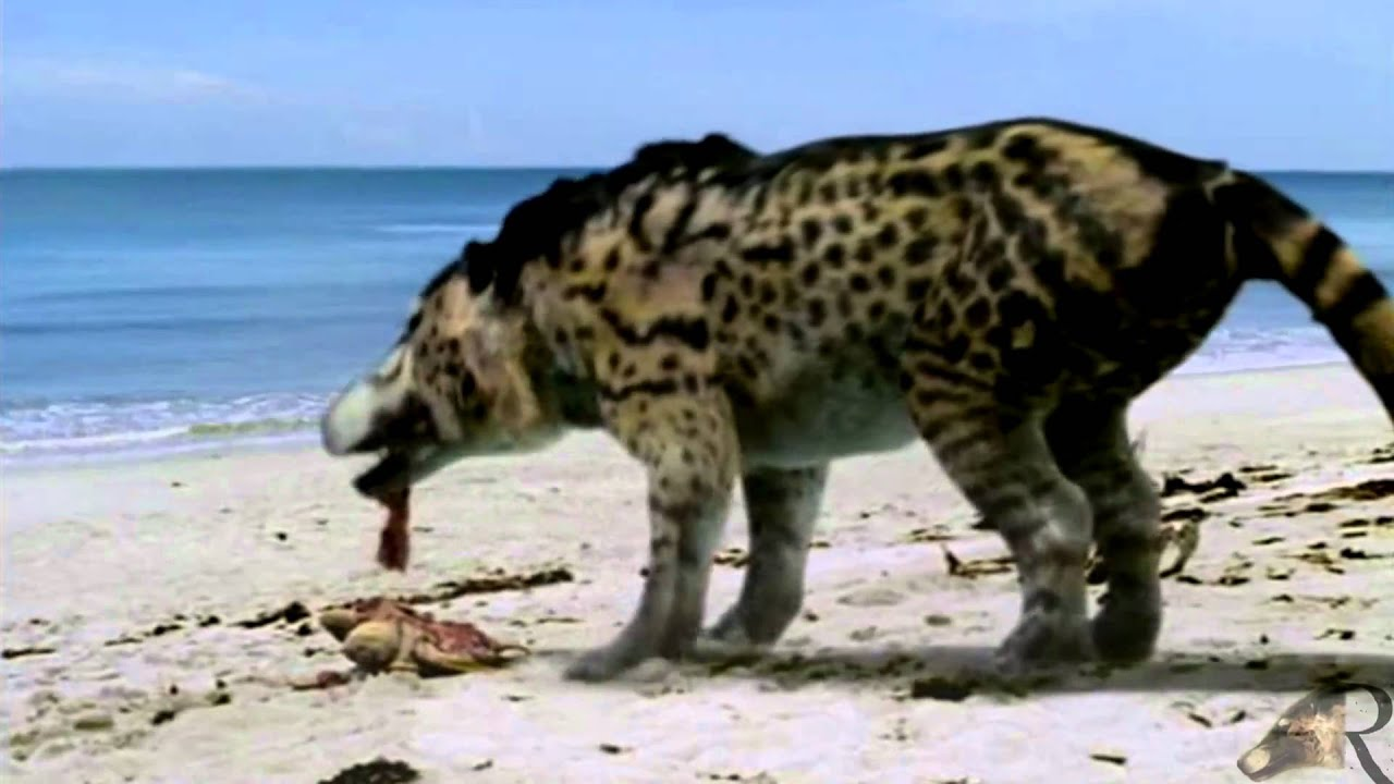 Image result for images of andrewsarchus