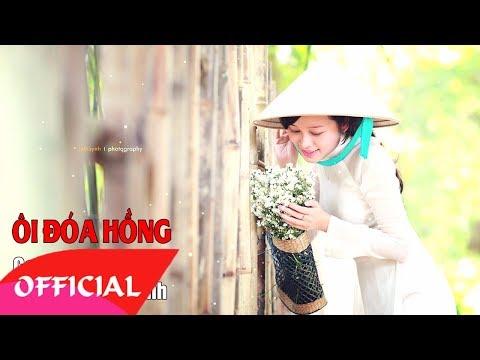 Ôi Đóa Hồng - Doãn Bình | Nhạc Trữ Tình 2017 | MV Audio