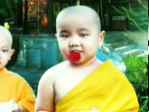 Chú tiểu Thơ ngây - Trình bày : Sư Thích Minh Đạo