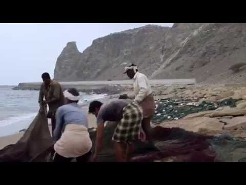 Fujairah Tours Video