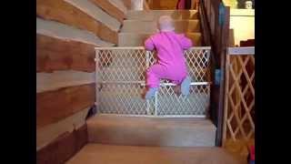Lucu banget, bayi melarikan diri